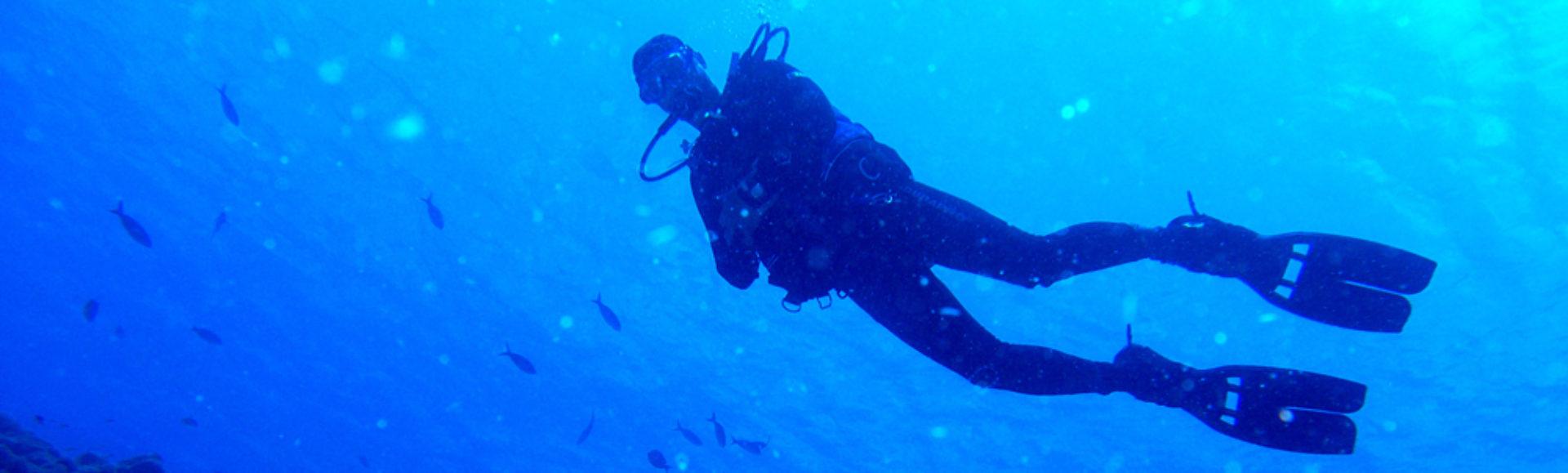 Under Pressure Dive Blog
